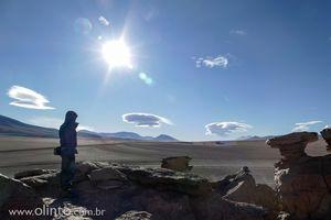 5A-cicloturismo-viagem-bicicleta-bolivia-arvore-pedra